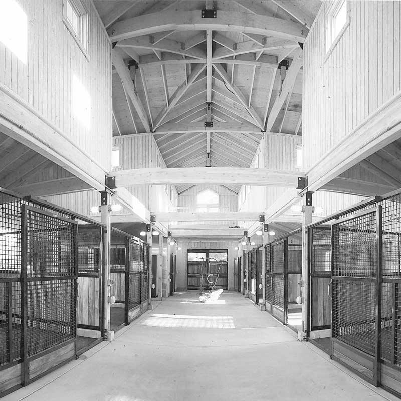 802 Horse Barn